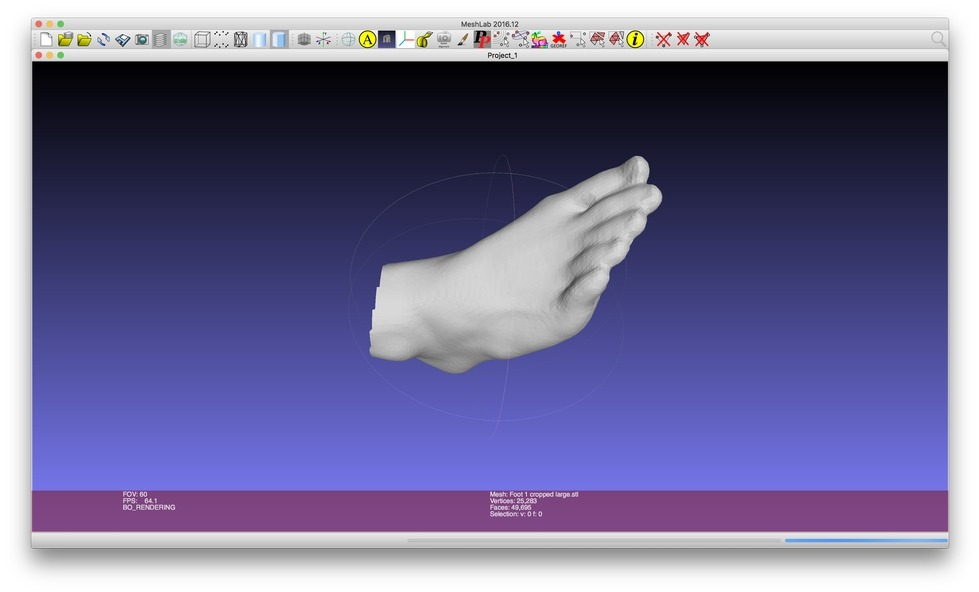A screenshot of the 3D Modeling software Meshmixer displaying a model foot.